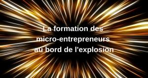 La formation des micro-entrepreneurs au bord de l'explosion